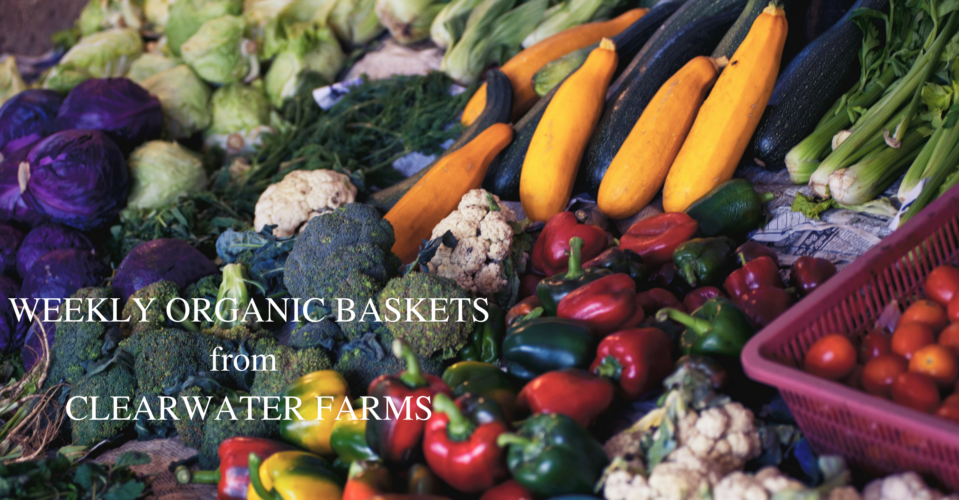 WeeklyOrganicBaskets_CSA_OrganicProduce